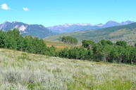 1363 Red Mountain Ranch Road Almont CO, 81210