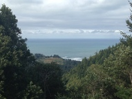 Grizzly Mtn Road R21508, R21573, R21635 Gold Beach OR, 97444
