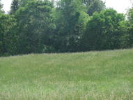 Lot 46, Donerhall Drive Campbellsville KY, 42718
