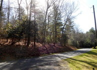 Tbd Ore Valley Road Laurel Springs NC, 28644
