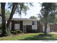 176 Ash Wood River IL, 62095