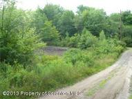 Lot 85 White Birch Lane & Lakeview Dr Newfoundland PA, 18445