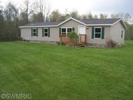 6519 North Hillman Six Lakes MI, 48886