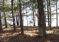 2298 Point Ln Lac Du Flambeau WI, 54538