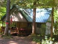 146 Cabin North Woods Cougar WA, 98616