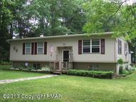 125 Spring Terrace Long Pond PA, 18334