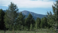 Tbd Moose Drive Lot 29 Blk 4  Hle West Yellowstone MT, 59758