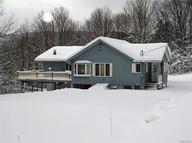 6579 Plum Creek Rd Ellicottville NY, 14731