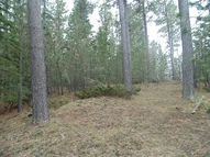 Lot 32 Snowy Bluff Lead SD, 57754