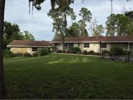 3261 Leprechaun Lane Palm Harbor FL, 34683