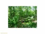 Lot 3 Rolling Brook Road Raymond ME, 04071