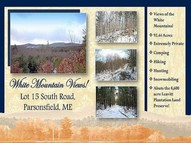 Lot 15 South Road Parsonsfield ME, 04047