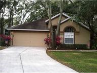 4625 Hidden Shadow Dr Tampa FL, 33614