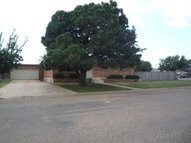 1017 Harrison Borger TX, 79007