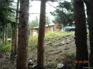 843 Brook Drive Idaho Springs CO, 80452