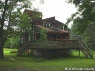 25 Ginger Road High Falls NY, 12440