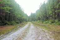 Old Reserve Road White Oak GA, 31568