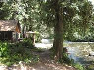 57096 North Bank Rd #2 Mckenzie Bridge OR, 97413