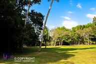 696 Lot For Sale At Dorado Beach Estates Dorado PR, 00646