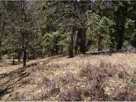 0 Crestline Road - Palomar Mountain CA, 92060