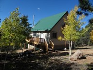 87 Blue Spruce Road Divide CO, 80814