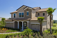 32529 Summerglade Dr Your Hometown FL, 33333