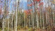 0 Bone Plain Road Parcel 1 Dryden NY, 13053