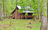 28 Big Tree Road Suches GA, 30572