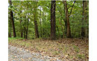 Mohawk Trail Lot 202 Ellijay GA, 30540