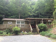 1137 Panther Branch Rd Bryson City NC, 28713