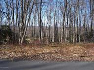 Lot H12 Wolf Hollow Rd Lake Harmony PA, 18624