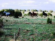0 Dean Road Moriarty NM, 87035
