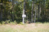 Lot 51 Black Diamond Dr New Castle VA, 24127