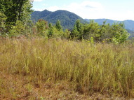 Lot 2 Wildlife Acres Hayesville NC, 28904