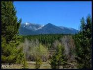 Lot # 43 Forest Loop Fortine MT, 59918