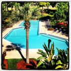 Coachman Crossing Apartments Clearwater FL, 33765