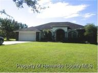 23044 Skyview Cir Brooksville FL, 34602