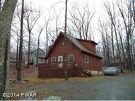 118 Karl Hope Blvd Lackawaxen PA, 18435