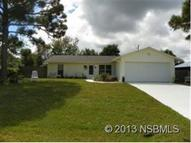 1408 Victory Palm Dr Edgewater FL, 32132