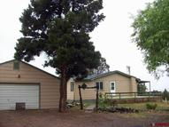 20781 Highway 65 Cedaredge CO, 81413