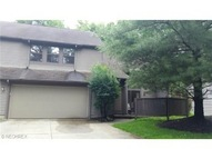 1273 Red Tail Hawk Ct #4 Youngstown OH, 44512