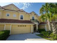2650 Tanglewood Trl Palm Harbor FL, 34685