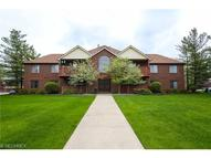 8647 Scenicview Dr Unit: 105 Broadview Heights OH, 44147
