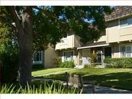 10123 Amador Oak Ct Ct Cupertino CA, 95014