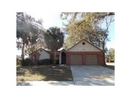 1041 Sawyers Court Lutz FL, 33559