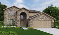 Orchid Georgetown TX, 78626