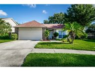 3171 Sumner Way Palm Harbor FL, 34684