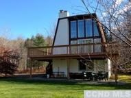 27 Chase Dr Windham NY, 12496