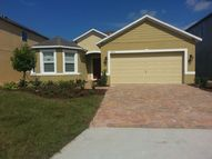 16031 Yelloweyed Dr. Clermont FL, 34714