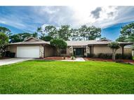 2532 Jennifer Ter Palm Harbor FL, 34685